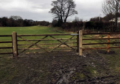 gate and fence in horse field